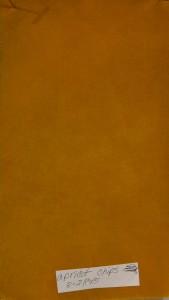 Apricot wood shavings 3-28-15